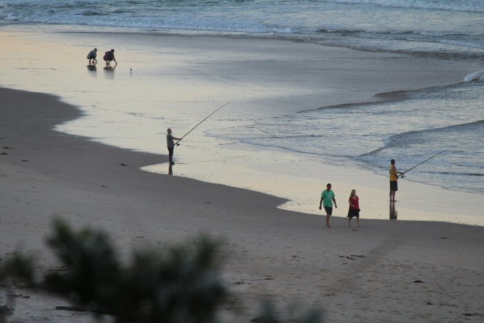 Urunga NSW Surf Beach Fisherman